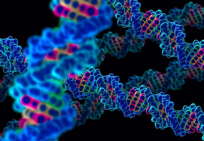 ДНК по крови на установление отцовства